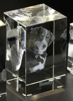 3D Glasblock mit Hund und Schriftzug