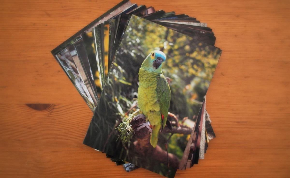 Bilderstapel Fotoabzüge 9x13, 10x15